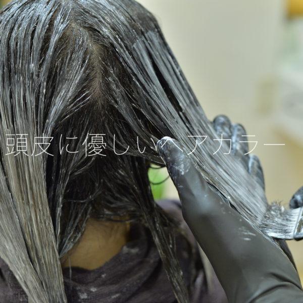 健康な頭皮から生まれる美髪